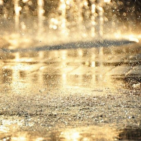 gold rain street water