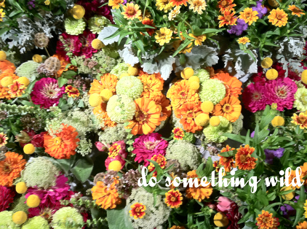 wildflowers: do something wild