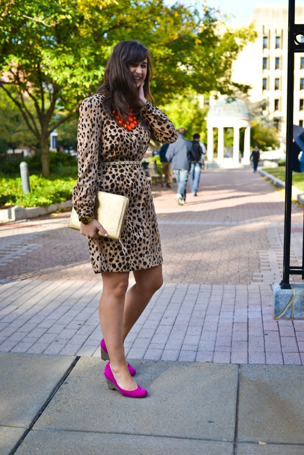 Nikki Rappaport What I Wear to Work Washingtonian Magazine - leopard print target dress, JessLC ipad case