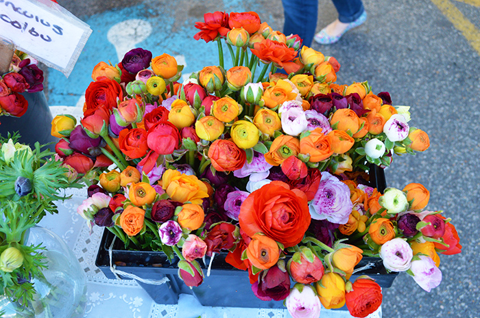 Cupcakes for Breakfast: Farmer's Market Mornings – Flowers