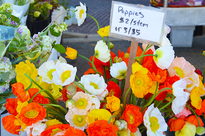 Cupcakes for Breakfast: Farmer's Market Mornings – Poppies