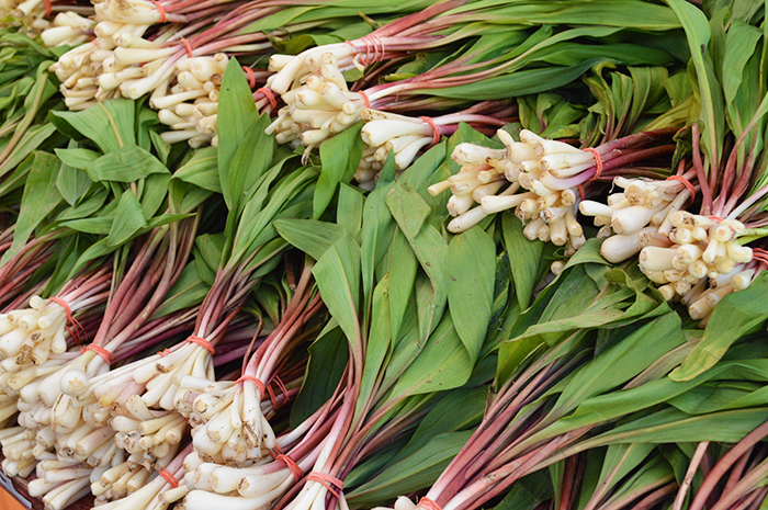 Cupcakes for Breakfast: Farmer's Market Mornings – Ramps